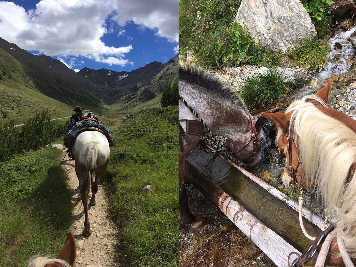Horse riding in the Alps